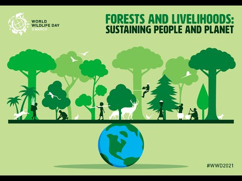 World Wildlife Day 2021 - Forests and Livelihoods: Sustaining People and Planet